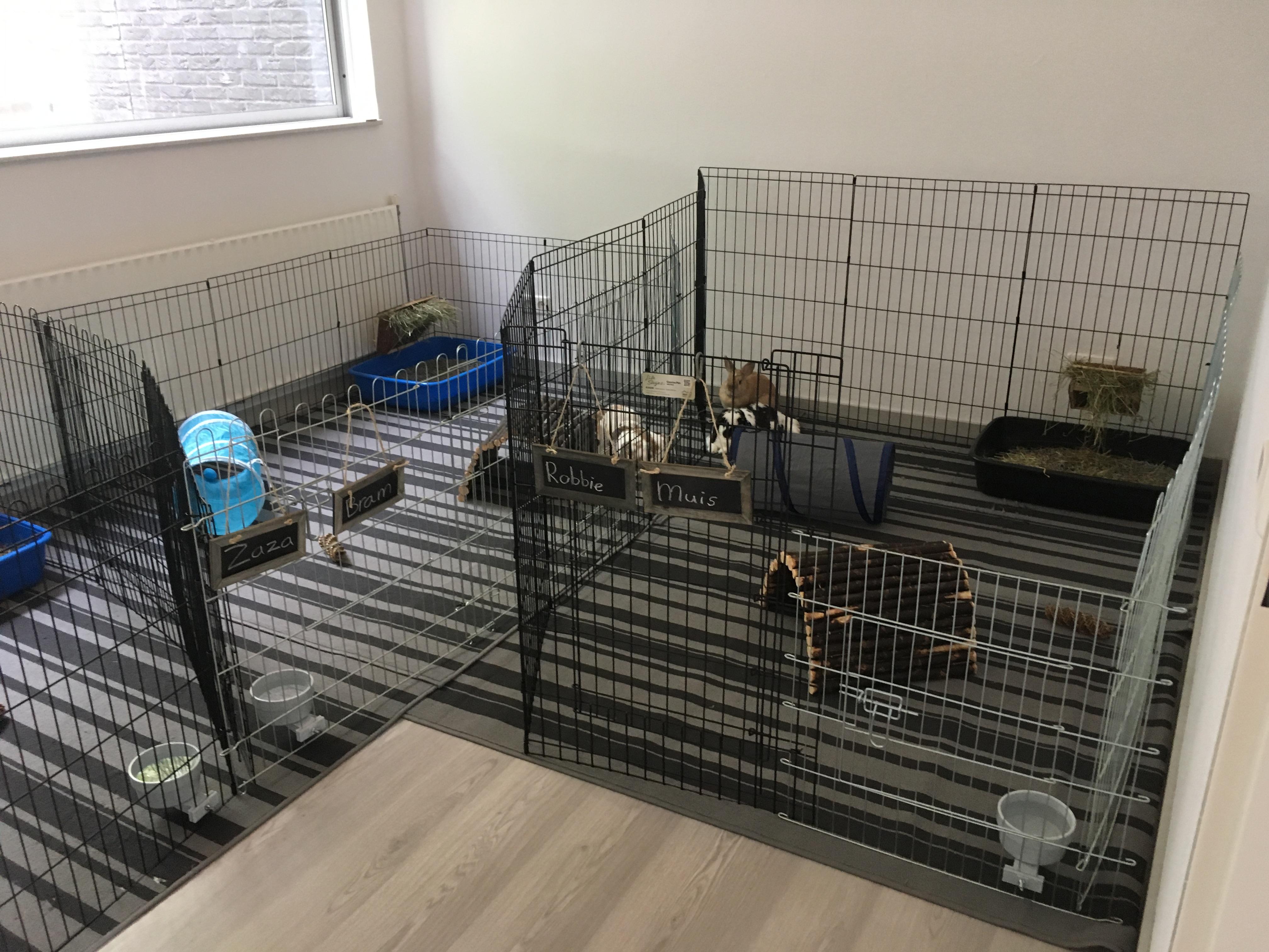 Binnenverblijven in de 'konijnenkamer'
